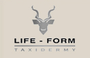 Life-Form-Taxidermy